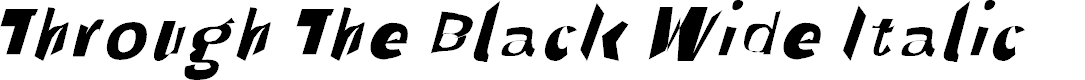 Preview image for Through The Black Wide Italic