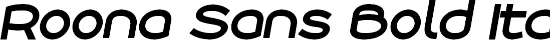 Preview image for Roona Sans Bold PERSONAL Italic
