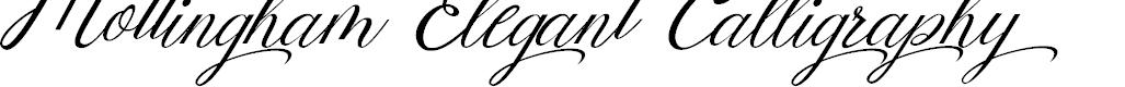 Preview image for Mottingham Elegant Calligraphy Font