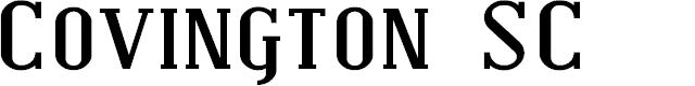 Preview image for Covington SC Exp Bold