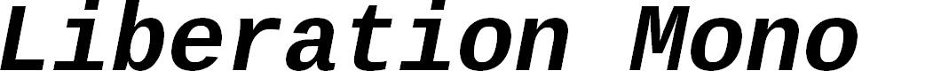 Preview image for Liberation Mono Bold Italic