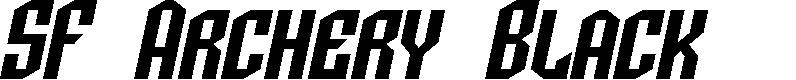 Preview image for SF Archery Black SC Oblique