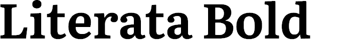 Preview image for Literata Bold