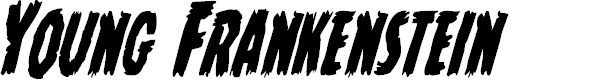 Preview image for Young Frankenstein Condensed Italic