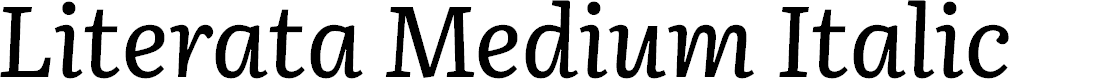 Preview image for Literata Medium Italic