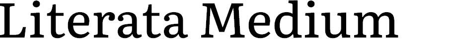 Preview image for Literata Medium