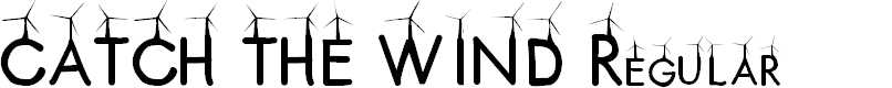 Preview image for CATCH THE WIND Regular Font
