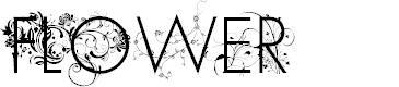Preview image for FLOWER Regular Font