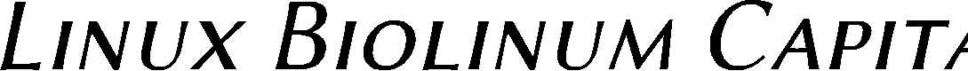 Preview image for Linux Biolinum Capitals Italic