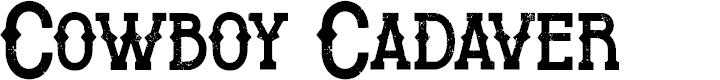 Preview image for Cowboy Cadaver