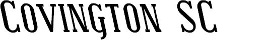 Preview image for Covington SC Rev Bold Italic