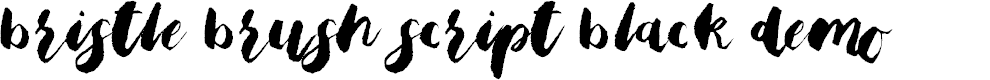 Preview image for Bristle Brush Script Black Demo Font