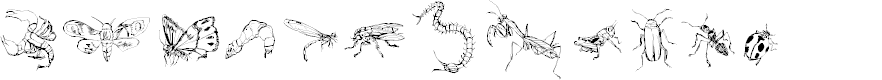 Preview image for DingTheInsect Font