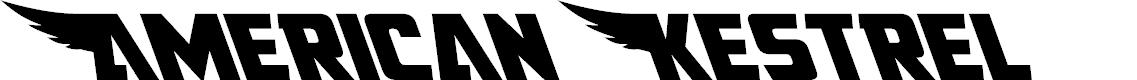 Preview image for American Kestrel Leftalic