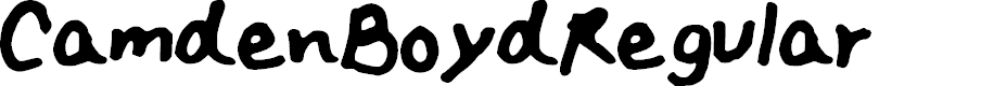 Preview image for Camden_Boyd_Regular Font