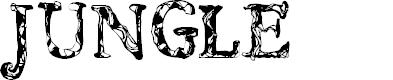 Preview image for CF JUNGLE Regular Font