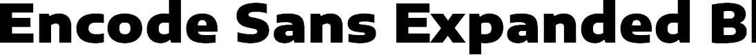Preview image for Encode Sans Expanded Black