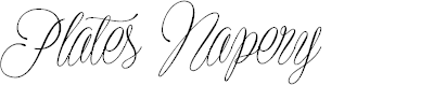 Preview image for Plates Napery Personal Use Font