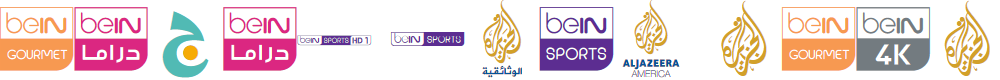 Preview image for logos bein aljazeera