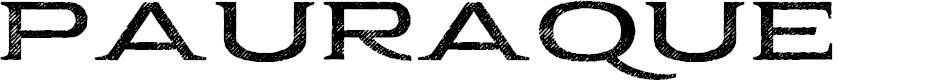 Preview image for Pauraque_Serif_Rough Regular