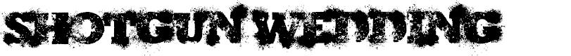 Preview image for ShotgunWedding Font