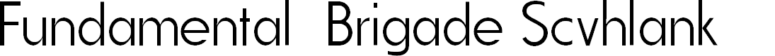 Preview image for Fundamental  Brigade Scvhlank