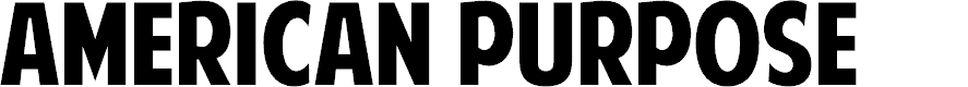 Preview image for American Purpose Font