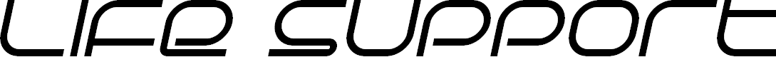 Preview image for Life Support Italic