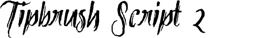 Preview image for Tipbrush Script 2