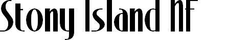 Preview image for Stony Island NF Font