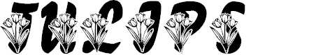 Preview image for LMS Tulips Font