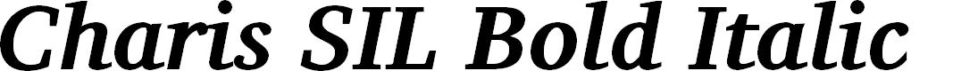 Preview image for Charis SIL Bold Italic