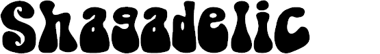 Preview image for Shagadelic Bold Font
