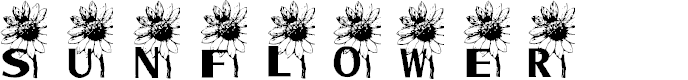 Preview image for AEZ sunflower letters Font