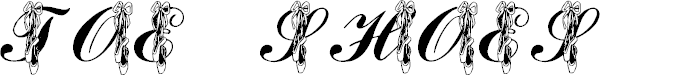 Preview image for LMS Toe Shoes Font