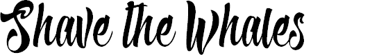 Preview image for Shave the Whales Personal Use Font