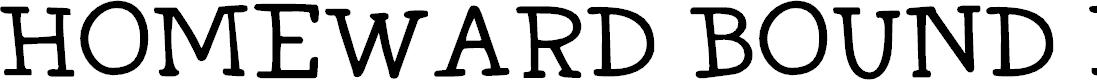 Preview image for DK Homeward Bound II Regular Font