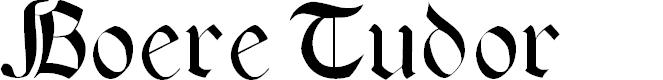 Preview image for BoereTudor Font