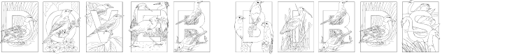 Preview image for Dover Birds Font