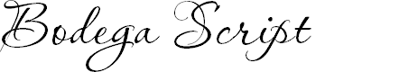Preview image for Bodega Script