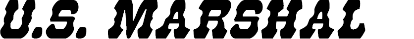 Preview image for U.S. Marshal Condensed Italic