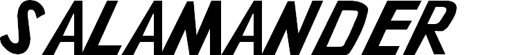 Preview image for Salamander Font