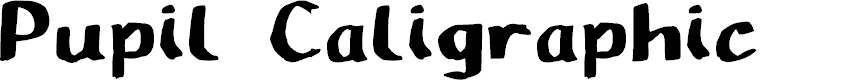 Preview image for Pupil Caligraphic Font