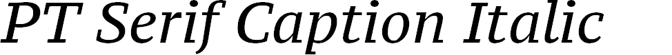 Preview image for PT Serif Caption Italic