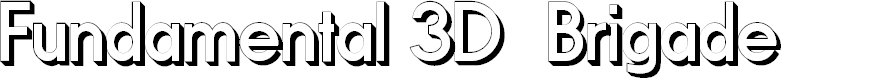 Preview image for Fundamental 3D  Brigade