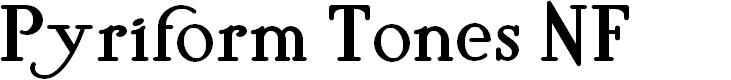 Preview image for Pyriform Tones NF Font