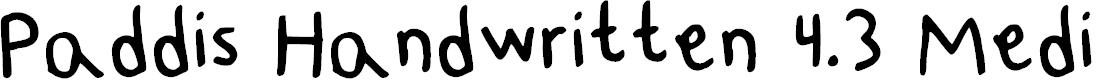 Preview image for Paddis Handwritten 4.3 Medium