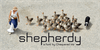 Shepherdy Font bird duck