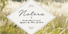 Notera 2 PERSONAL USE ONLY Font handwriting letter