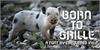 Born to Grille Font outdoor animal